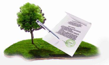 Договор пользования земельным участком картинка