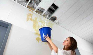 Исковое заявление о возмещении ущерба от залива жилья картинка