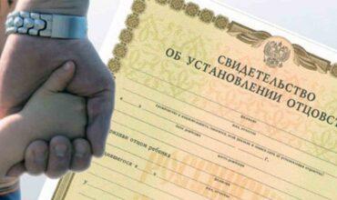Государственная регистрация установления отцовства картинка